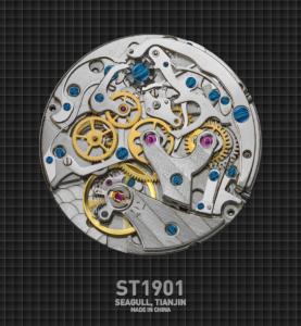 Seagull ST1901